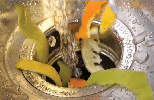 food_scraps_down_drain-01-1w