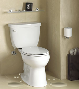 toilet-with-water-on-floor1